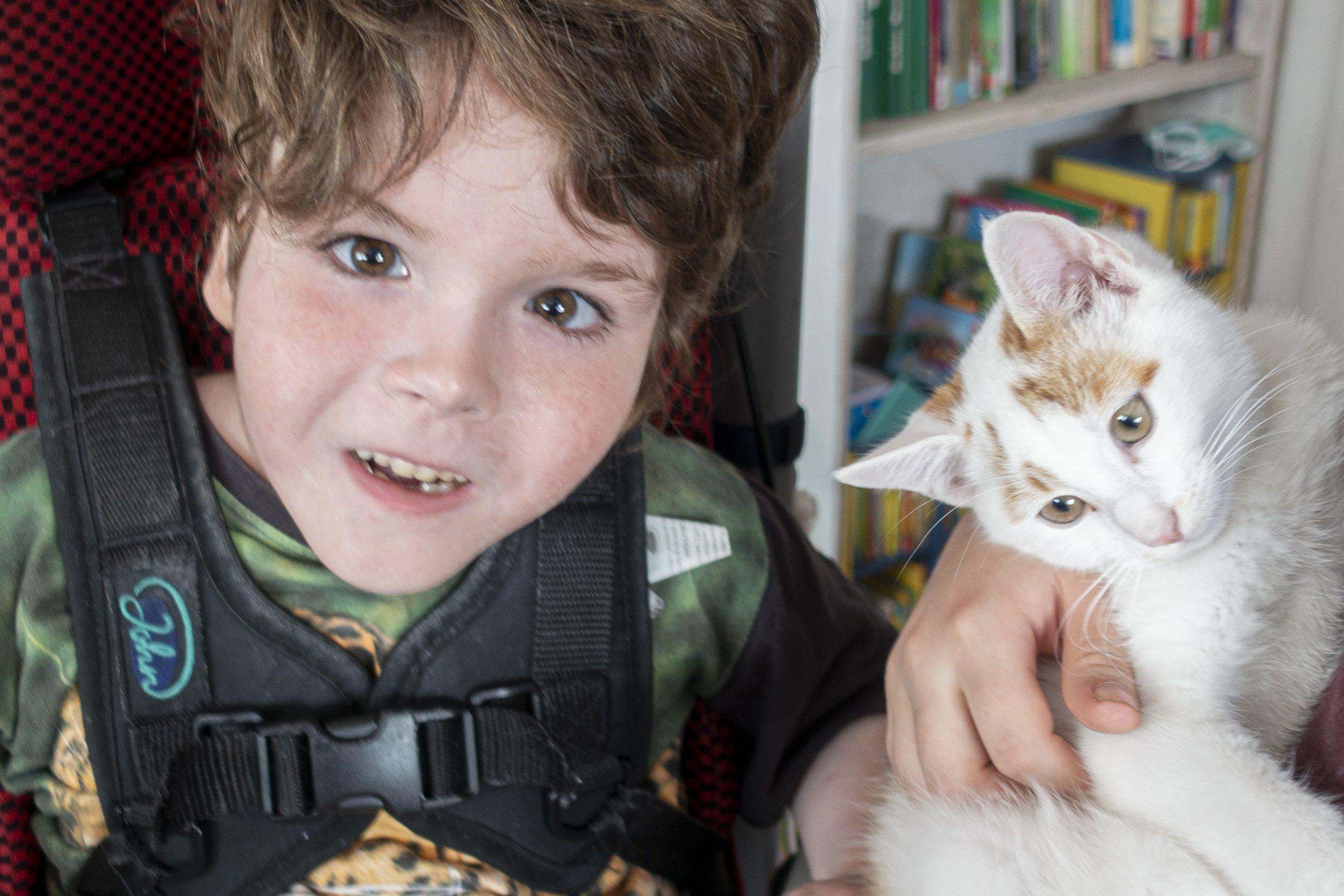 Raphael mit Katze